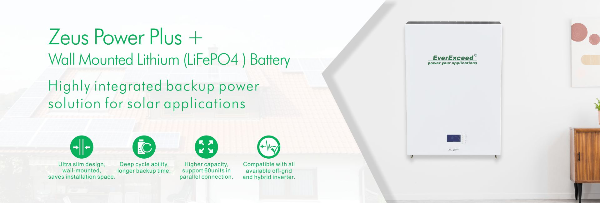 Wall Mounted Lithium (LiFePO4 ) Battery